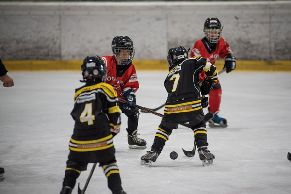 Young Eagles gegen St. Pölten